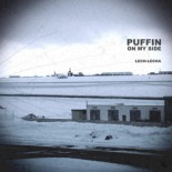 puffin_on_my_side_lech_lecha