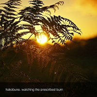 hakobune_watching_the_prescribed_burn