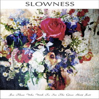 slowness_for_those_who_see_the_glass