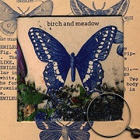 birch_and_meadow_butterflies_and_graves