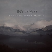 tiny_leaves_a_good_land_an_excellent_land