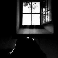 nacht_plank_notes_from_an_open_window_2