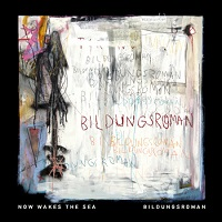 now_wakes_the_sea_bildungsroman