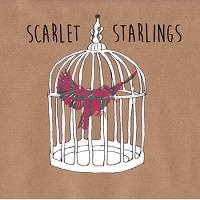 scarlet_starlings