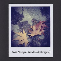 david_newlyn_good_luck_enigma