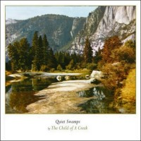 the_child-of_a_creek_quiet_swamps