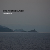 xu_rooms_delayed_seaweed