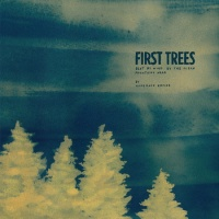 homemade_empire_first_trees