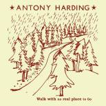 antony_harding_walk_with_no_real_place_to_go_streaming