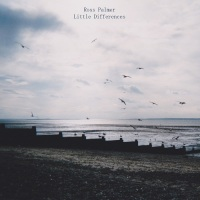 ross_palmer_little_differences