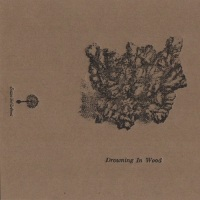drowning_in_wood