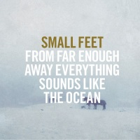 small_feet_from_far_enough_away_everything_sounds_like_the_ocean