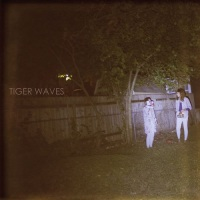 tiger_waves_tippy_beach